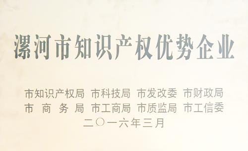 漯河市知识产权优势企业